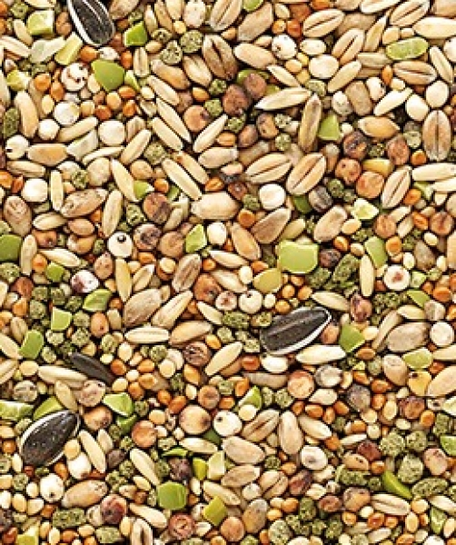 Versele-Laga Country's Best Snack Garden Mix 1 kg