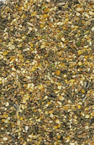Versele-Laga Country's Best Gold 4 Mix 20 kg