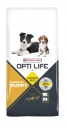 Opti Life Puppy Medium Hundefutter 12,5 kg